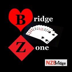 Bridge Zone Logo