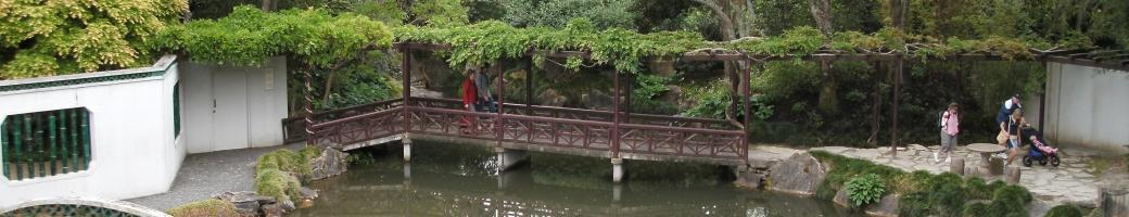 121 tips for better bridge mendelson paul